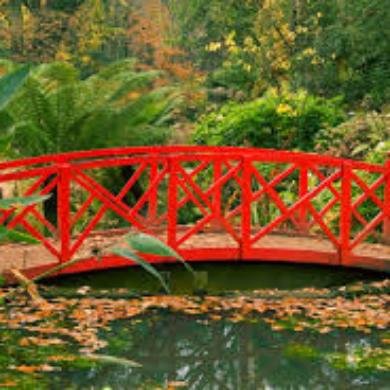 Past-life-bridge1.jpg